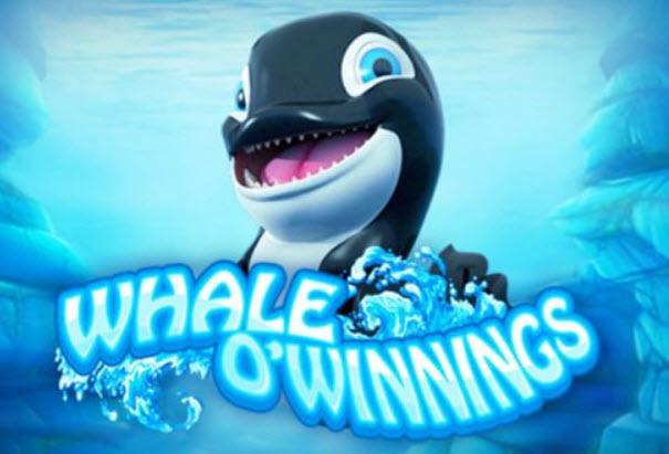 whale o winnin